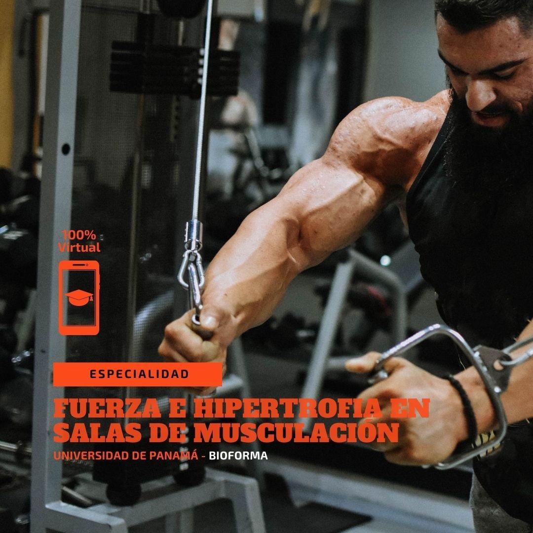 Especialidad: Entrenamiento de la fuerza en salas de musculación